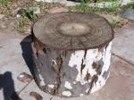 Tree Stump ( Original)